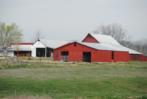 I so love looking at all the beautiful barns along the way. Red ones especially.