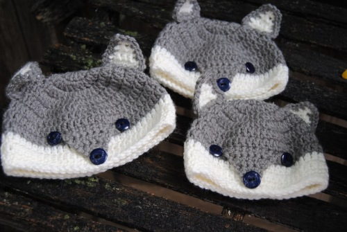 I had decided a week or so ago that I would like to make some little gray fox hats. So I got my gray yarn out and made a few fox hats. I love the way the little gray foxes look with their navy blue eyes.