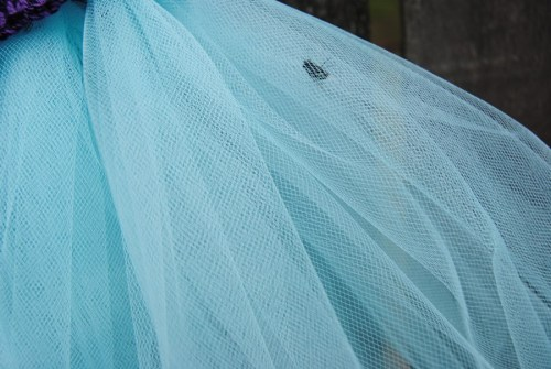 Even this huge horse fly seemed to love the turquoise tulle.