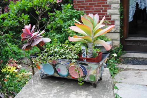 This was a cool vendor that had some really great planters.